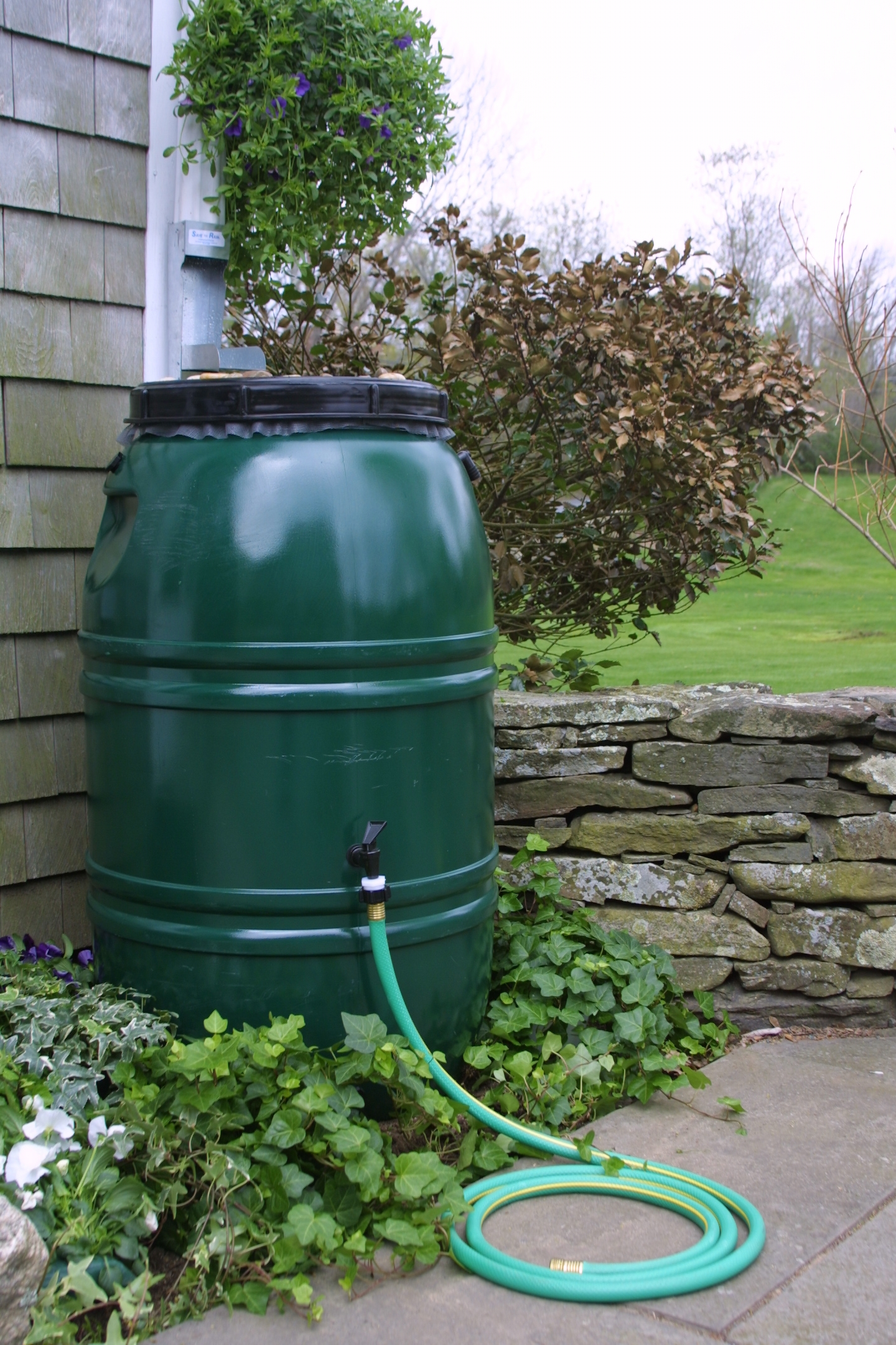 rain-barrel-pic1